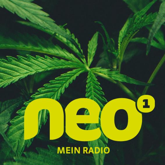Cannavalley bei NEO1 Radio über CBD und HANF